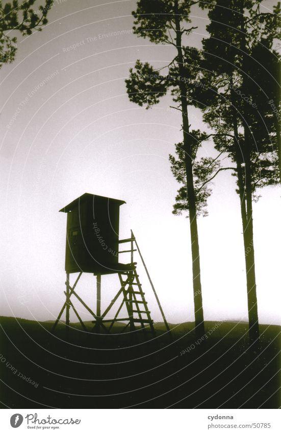 Hochsitz dunkel Jäger unheimlich Stimmung Eindruck Waldrand Architektur Schwarzweißfoto Jagd Natur Landschaft Abend Kontrast Silhouette