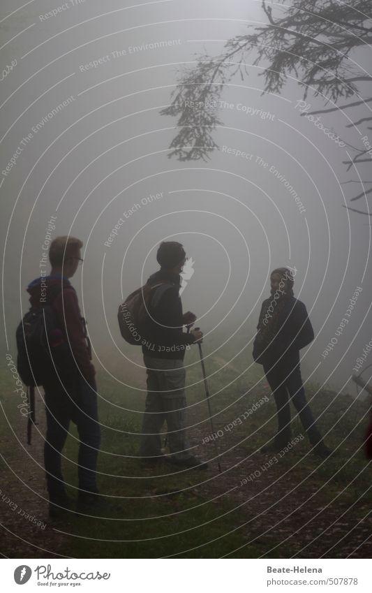 Nebelwanderung wandern Mensch maskulin feminin 3 Natur Landschaft Himmel Herbst schlechtes Wetter Baum Wald Fußgänger Wege & Pfade atmen Erholung genießen