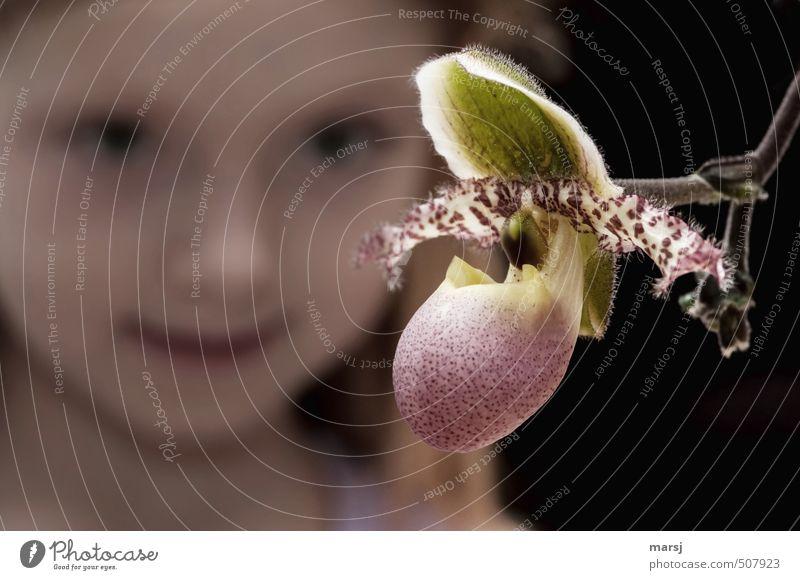 Zwei Schönheiten! Mensch Kind schön Pflanze Blume ruhig Mädchen feminin Blüte Kopf träumen Kindheit leuchten Lächeln beobachten Blühend
