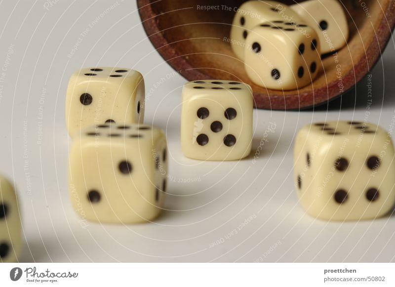 Würfel :: life is just a game Mann alt Freude Leben Spielen Glück hell gefährlich Erfolg Suche Ziffern & Zahlen Symbole & Metaphern Sehnsucht Seite Desaster