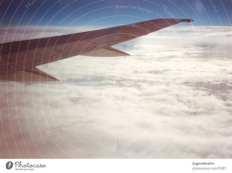 Flugzeug - Tragfläche 1 Flugzeug Luftverkehr Tragfläche