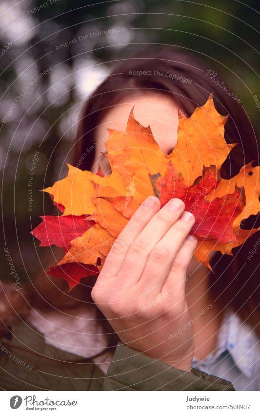 Ein gutes Blatt Mensch feminin Junge Frau Jugendliche Erwachsene Hand 13-18 Jahre Kind Umwelt Natur Herbst Pflanze Baum Wald Jacke Mantel brünett natürlich