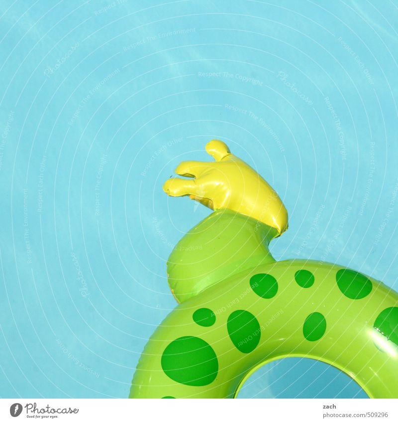 Froschschenkel Freude Schwimmen & Baden Im Wasser treiben Schwimmsport Spielen Ferien & Urlaub & Reisen Wassersport Kind Beine Fuß Tierfuß Badeente Erholung