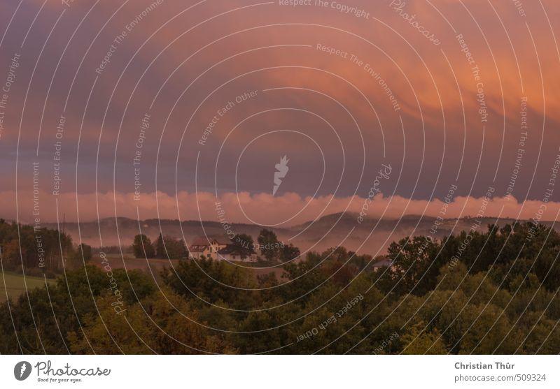 Abenddämmerung im Nebel Abenteuer Natur Landschaft Herbst Feld Alpen Berge u. Gebirge außergewöhnlich bedrohlich schön blau braun violett orange rosa