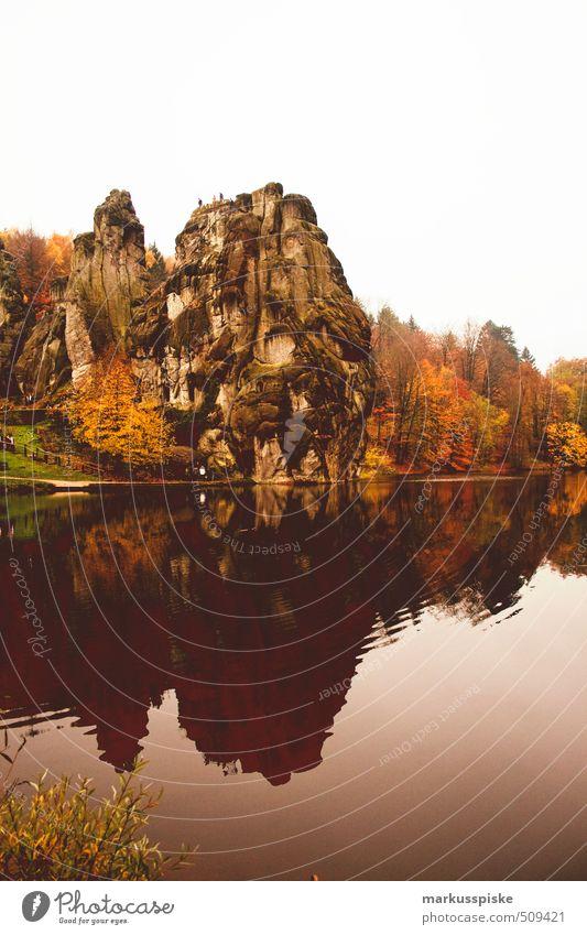 Externsteine Natur Ferien & Urlaub & Reisen Pflanze Baum Landschaft Tier Wald Tanzen Tourismus wandern Ausflug Abenteuer fantastisch entdecken Denkmal mystisch