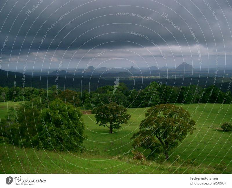 glashouse Natur grün ruhig Ferne Leben dunkel Wiese Berge u. Gebirge Freiheit Landschaft Horizont genießen Australien saftig Eindruck Queensland