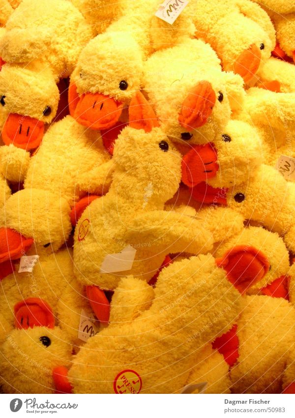 so viele enten Tier gelb Kindheit mehrere niedlich weich Ente kuschlig Haufen Ware Kuscheln Stofftiere Tierfigur