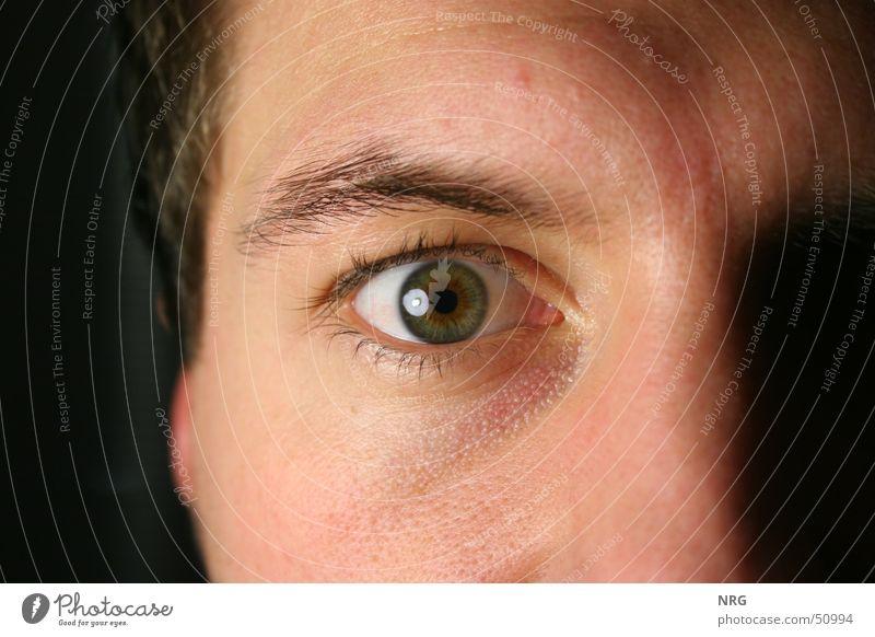occhio Auge Perspektive Wimpern Augenbraue