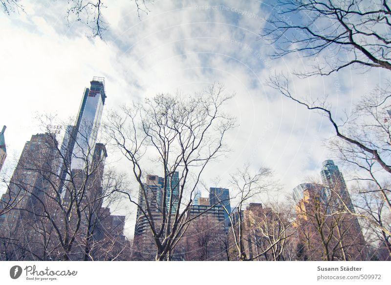 nyce Himmel Stadt Baum Wolken Haus Winter Architektur Gebäude Hochhaus groß Bauwerk Skyline Hauptstadt Bankgebäude Stadtzentrum gigantisch