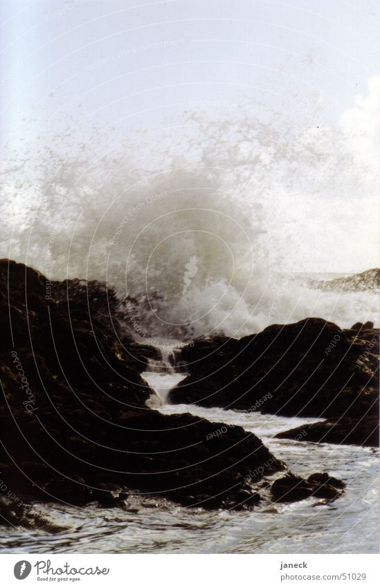 Brandung in Porto, Portugal Wasser Meer schwarz Stein Felsen Korsika Atlantik