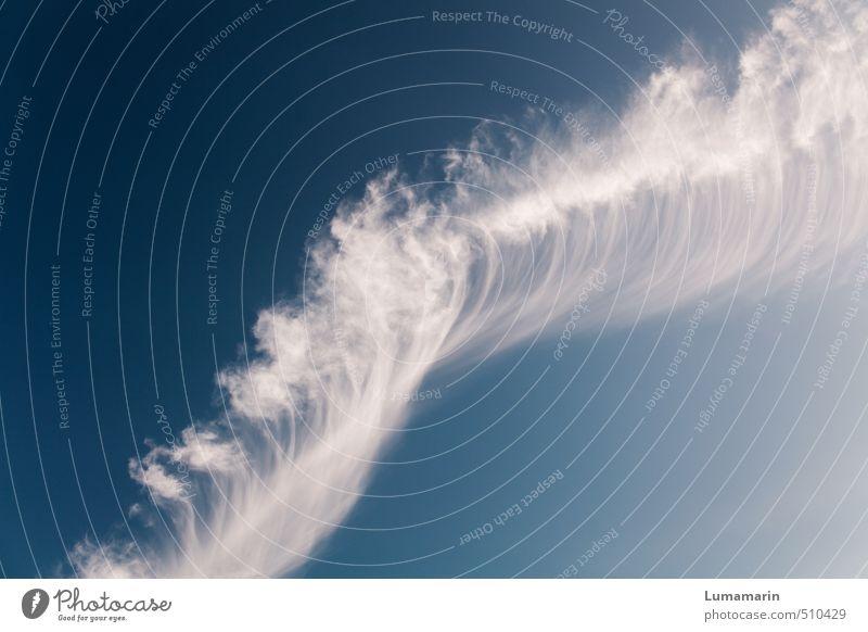 schwerelos schön Wolken Ferne Umwelt Freiheit oben natürlich außergewöhnlich Horizont Stimmung Luft Wind Klima Schönes Wetter Zukunft Urelemente