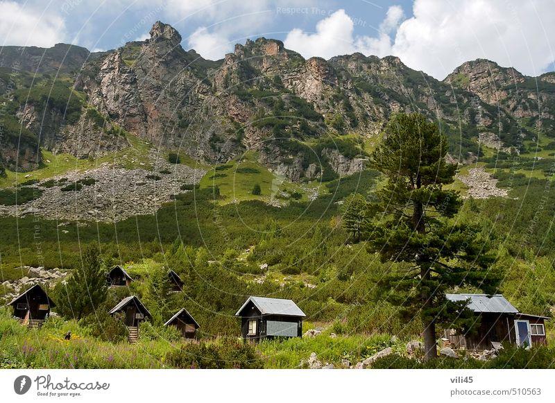 Holzhaus (Bungalow) bei Raststätte Maliovitza Natur Landschaft Pflanze Himmel Wolken Sommer Schönes Wetter Baum Blume Gras Sträucher Wiese Wald Hügel Felsen
