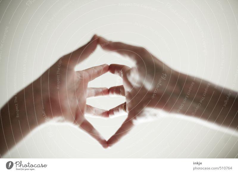merkelmoves Mensch Hand Erholung ruhig Erwachsene Leben Gefühle Zufriedenheit warten Finger berühren Wellness Wohlgefühl Konzentration harmonisch Meditation