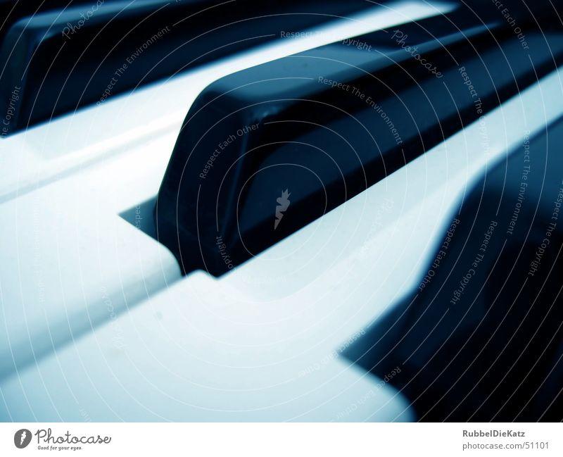 Key`s blaustich schwarz weiß Ton Synthesizer Musik Technik & Technologie Klang producing