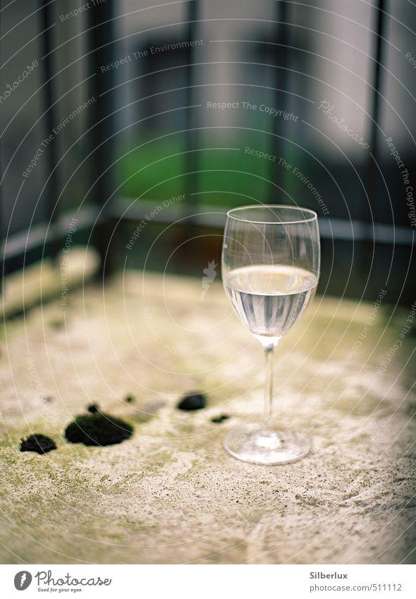 Wineglass Getränk trinken Alkohol Wein Glas Feste & Feiern Moos dehydrieren einfach kalt nah trist Stadt weich Traurigkeit Sorge Durst Unlust Einsamkeit