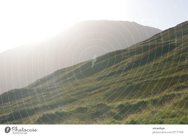 Schottlands schönste Seite (Glencoe Tal) Umwelt Natur Landschaft Pflanze Tier Urelemente Himmel Sonne Sonnenlicht Herbst Schönes Wetter Gras Moos Wiese Hügel