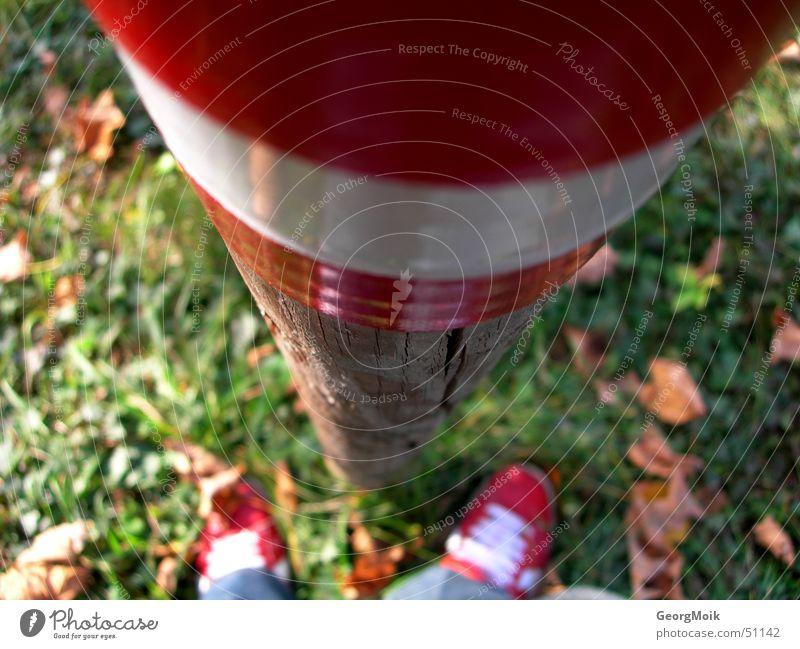 wandertag Mann weiß grün rot Blatt Herbst Holz Schuhe braun wandern fallen Fußweg Chucks Turnschuh Stock