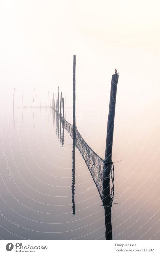 Vipperow Himmel Natur Wasser Landschaft ruhig Wolken Umwelt Herbst See rosa orange Nebel Idylle weich Schönes Wetter Seeufer