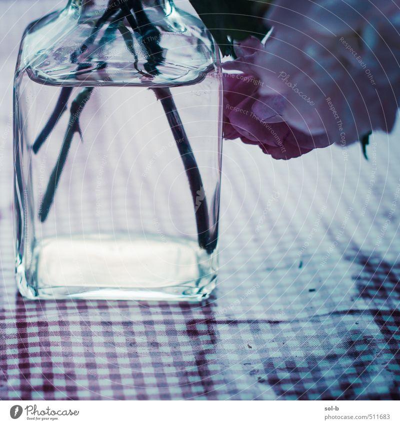 alt Wasser Erholung Blume Liebe Traurigkeit Stil Zeit Feste & Feiern elegant Zufriedenheit Häusliches Leben Lifestyle Glas Tisch Romantik