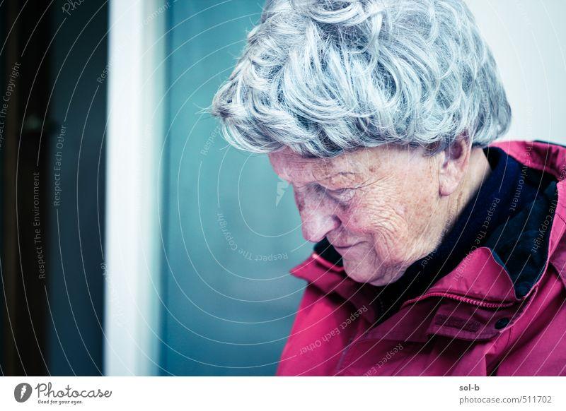 Kalthaus Seniorenpflege Zufriedenheit Erholung Häusliches Leben Haus Raum Mensch feminin Weiblicher Senior Frau Großmutter 1 60 und älter Fenster Jacke Denken