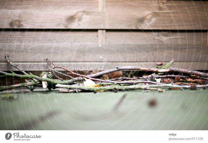 Herbst Garten Natur Ast Stock Zweige u. Äste Menschenleer Mauer Wand Terrasse Holzzaun Bretterzaun liegen trocken braun Wandel & Veränderung Haufen Farbfoto