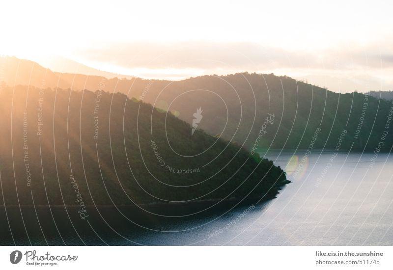 neuseeländischer herbst Natur Ferien & Urlaub & Reisen Meer Erholung Landschaft ruhig Ferne Wald Umwelt Berge u. Gebirge Küste natürlich Tourismus wandern