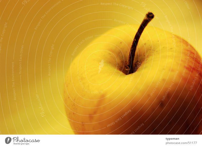 Licht-Apfel Gesundheit Wohlgefühl ködern Apfelbaum Wurm wurmstichig gelb rot saftig Vitamin Ernährung Bioprodukte Frucht Wohltat Natur orange knackig fruit