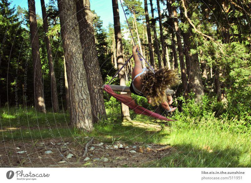 beschwingt. Frau Natur Jugendliche Sommer Baum Junge Frau Freude Wald Erwachsene Umwelt Leben feminin Gras Spielen Haare & Frisuren Glück