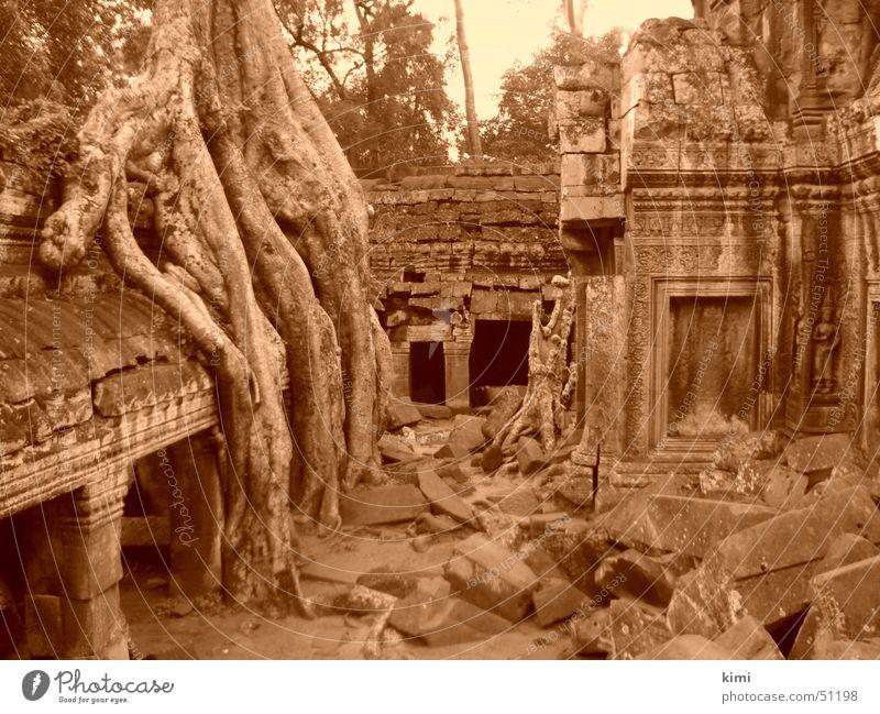 Tomb Raider Temple, Kambodscha Tempel Ta Prohm Tempel Bauwerk tomb raider temple Sepia