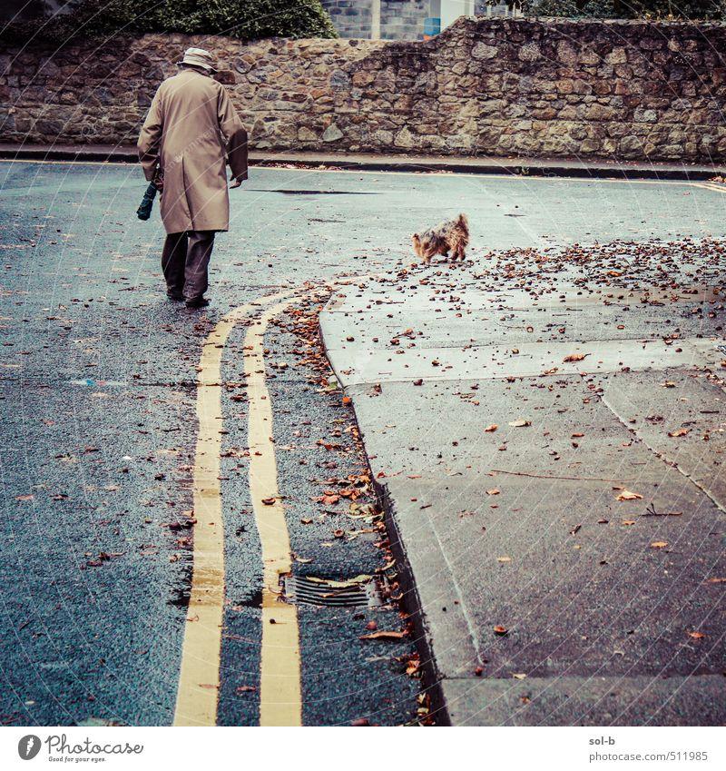 Hund Mensch Frau Natur Mann alt Blatt Tier Erwachsene kalt Wand Straße Leben Senior Herbst Wege & Pfade