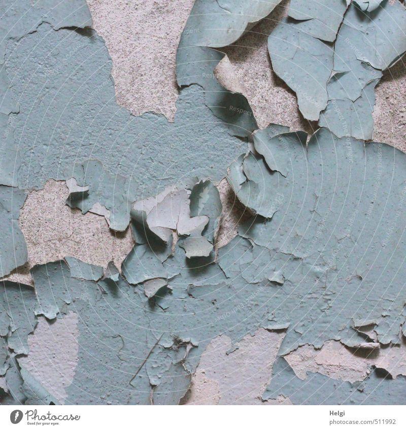 AST5   der Lack ist ab... blau alt Haus Wand Senior Mauer grau außergewöhnlich Stimmung Häusliches Leben authentisch einfach Vergänglichkeit