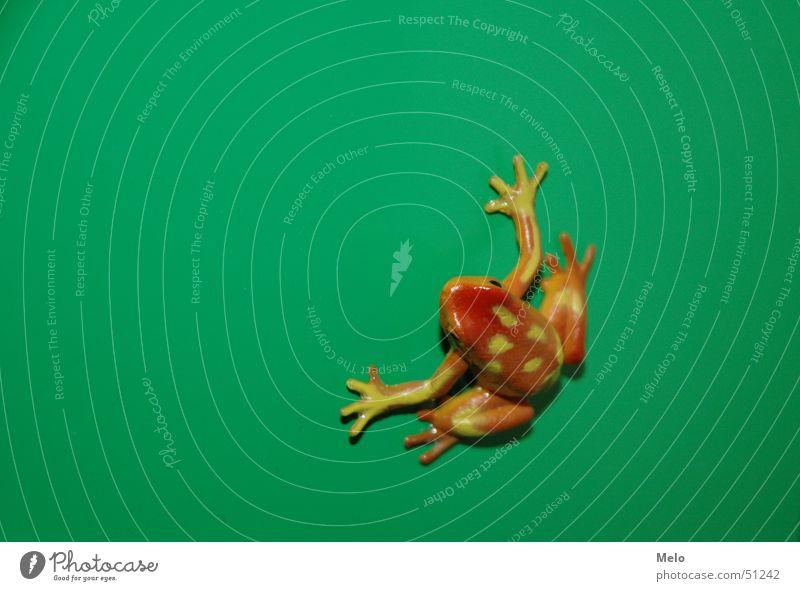 frog grün rot orange Frosch Schrank