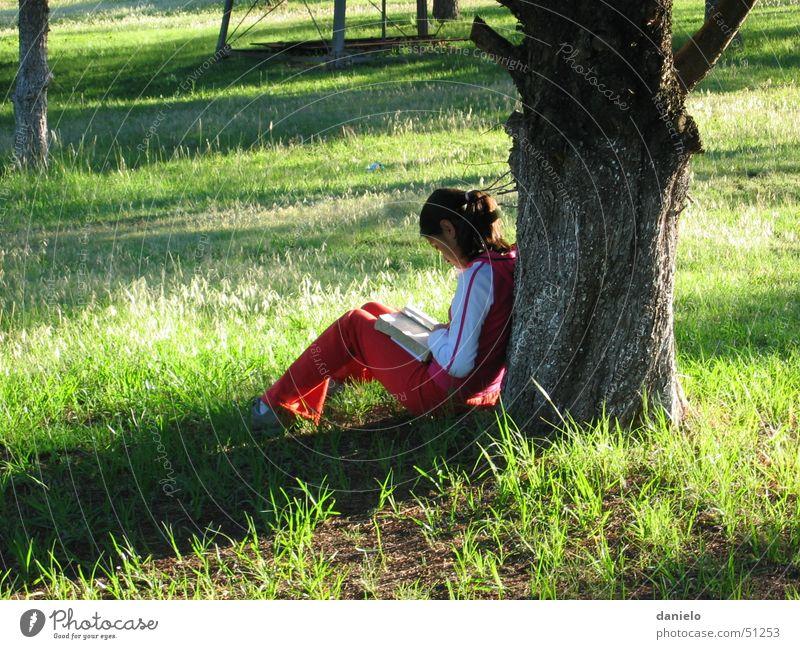 Stille Zeit Mensch Natur Mädchen Baum ruhig Einsamkeit Wiese Kind Buch lesen Gebet Gott Götter Bibel