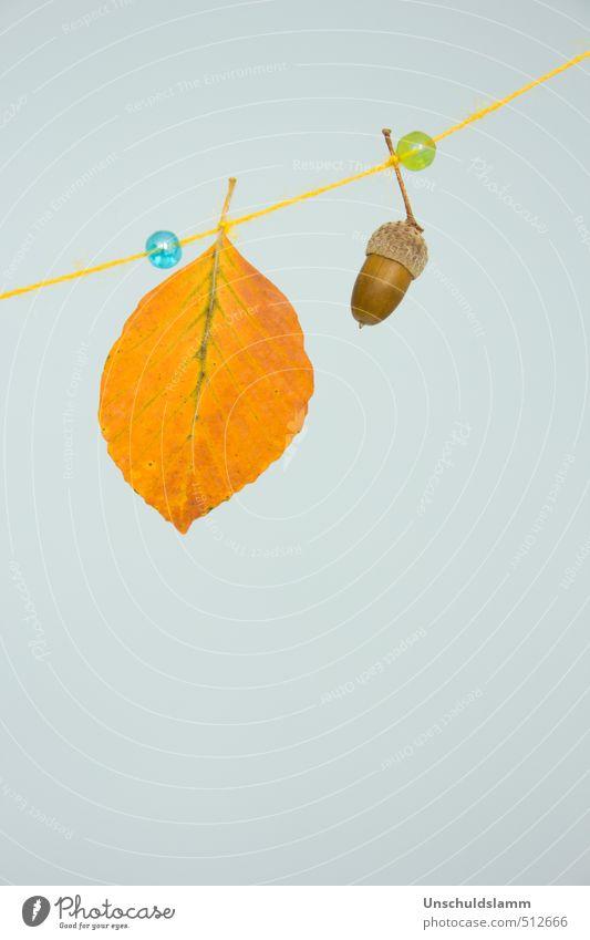 Herbstschmuck Lifestyle Stil Design Basteln Häusliches Leben Dekoration & Verzierung Natur Blatt Eicheln Kitsch Krimskrams Girlande Perle hell einzigartig