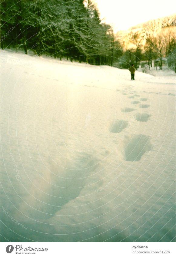 im Tiefschnee Mensch weiß Sonne Winter ruhig Einsamkeit Wald kalt Schnee Landschaft Eis wandern Spaziergang Spuren Fußspur Eindruck