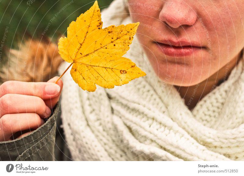 Hallo Herbst! feminin Nase Mund Hand 1 Mensch Blatt Jacke Schal festhalten natürlich gelb Stimmung Beginn Endzeitstimmung Vergänglichkeit Wandel & Veränderung