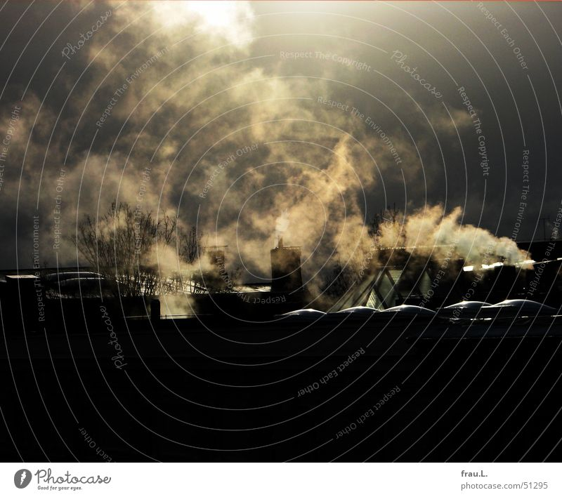 heftiges heizen Rauch Dach Oberlicht Sonnenlicht Gegenlicht Regenwolken Winter kalt frieren Physik Hamburg Wasserdampf Schornstein Himmel Heizkörper Wärme