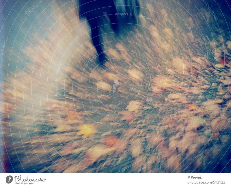 bewegt feminin Beine Fuß 1 Mensch rennen Bewegung laufen braun orange Herbstlaub gehen Wege & Pfade Blatt Unschärfe abstrakt Farbfoto Gedeckte Farben