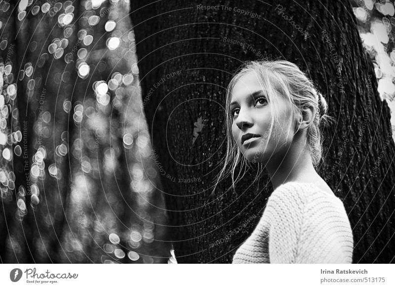 Mensch Natur Jugendliche schön Baum 18-30 Jahre Wald Erwachsene Herbst grau träumen warten Fröhlichkeit genießen Kreativität Inspiration