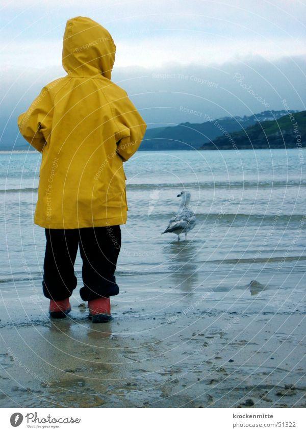 möwe schauen Kind gelb Möwe Regenmantel Stiefel rot Meer England Strand Wolken Kapuze seemöwe Wasser Sand sandspuren beobachten Junge Rückansicht boy sea