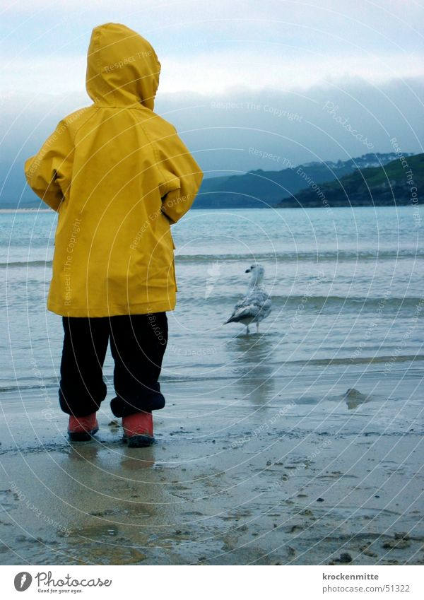 möwe schauen Kind Wasser Meer rot Strand Wolken gelb Junge Sand Regen beobachten Stiefel Möwe England Kapuze Schutz