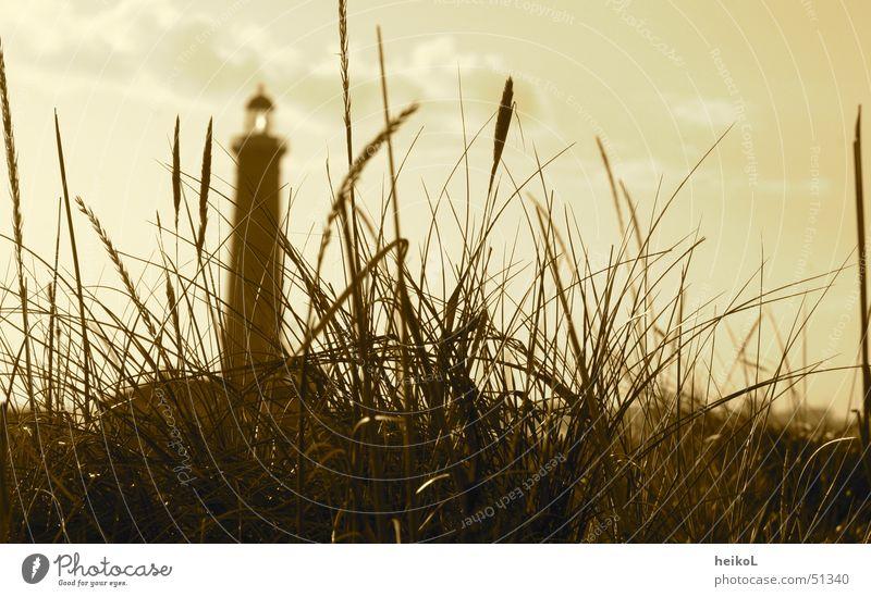 Leuchtturm in den Dünen Skaagens Stranddüne Dänemark