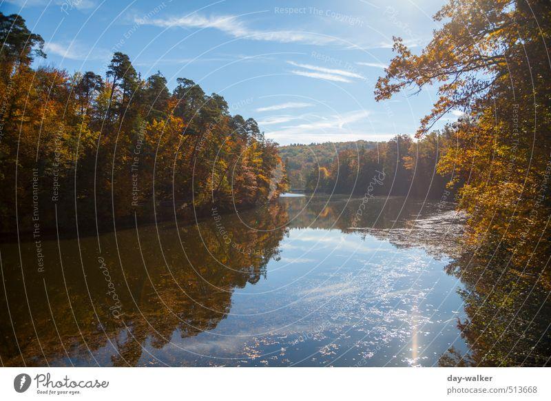 Bärensee 2013 | Autumn feelings Natur Landschaft Wasser Himmel Wolken Herbst Schönes Wetter Baum Sträucher Park kalt blau braun mehrfarbig gelb gold grün weiß