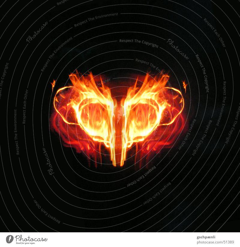 firefly rot gelb dunkel Lampe orange Herz Brand heiß Schmerz brennen Flamme Surrealismus Vor dunklem Hintergrund