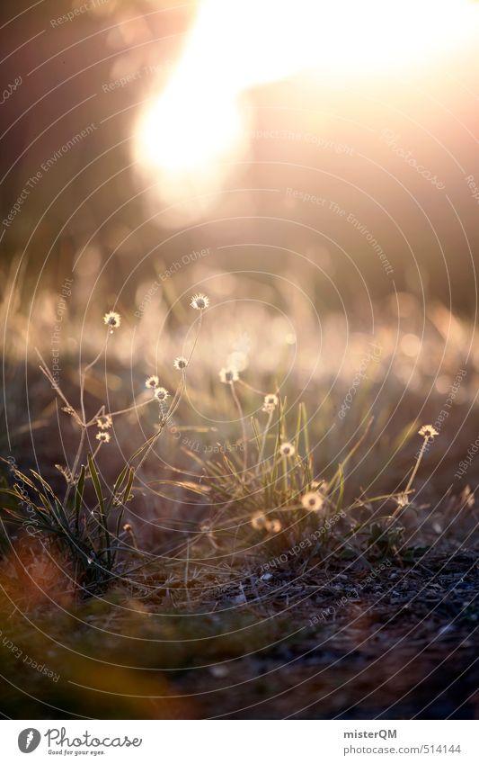 French Style XII grün Sommer Wiese Gras hell Kunst Erde Zufriedenheit ästhetisch Boden sommerlich Sommerabend