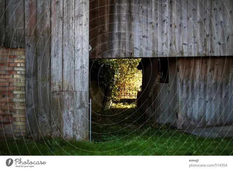 Durchgang Umwelt Natur Haus Hütte Mauer Wand Fassade natürlich grün Holzbrett Holzwand Tunnel Farbfoto Außenaufnahme Menschenleer Tag Schwache Tiefenschärfe