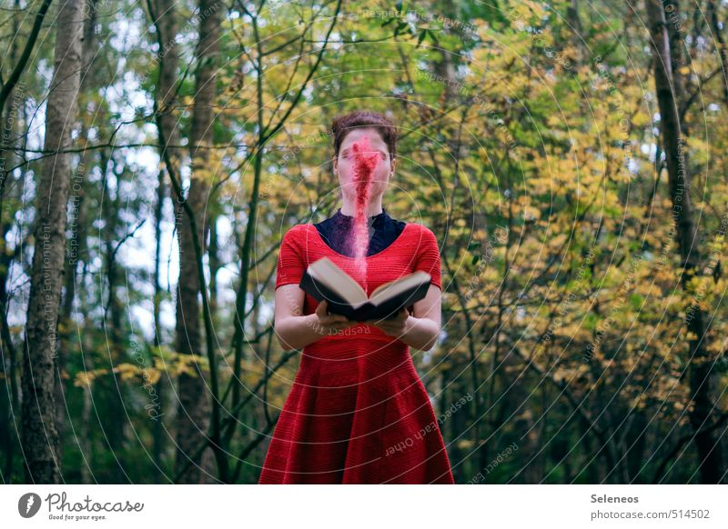 Bücherkinder glauben an Magie Mensch Frau Natur Baum Wald Erwachsene Umwelt feminin Herbst träumen Körper Buch Ausflug Abenteuer fantastisch lesen