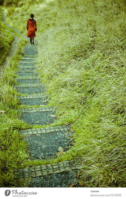 hinab Mensch feminin Junge Frau Jugendliche Erwachsene 1 Landschaft Gras Sträucher Garten Park Wiese grün Abenteuer Beginn Zufriedenheit Einsamkeit entdecken