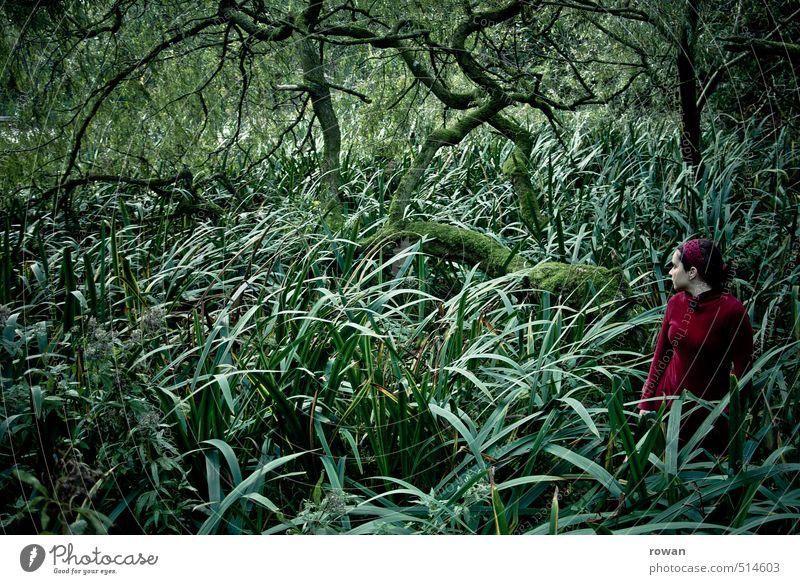 verwunschen Mensch feminin Frau Erwachsene Baum Sträucher Moos bedrohlich dunkel gruselig Überraschung träumen Traurigkeit Sorge Angst Entsetzen Todesangst