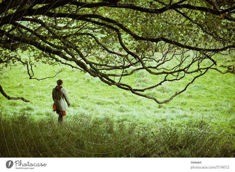 wandeln Mensch feminin Frau Erwachsene 1 Baum entdecken Spaziergang mystisch Park Ast grün Kleid gehen Farbfoto Außenaufnahme Textfreiraum unten Tag